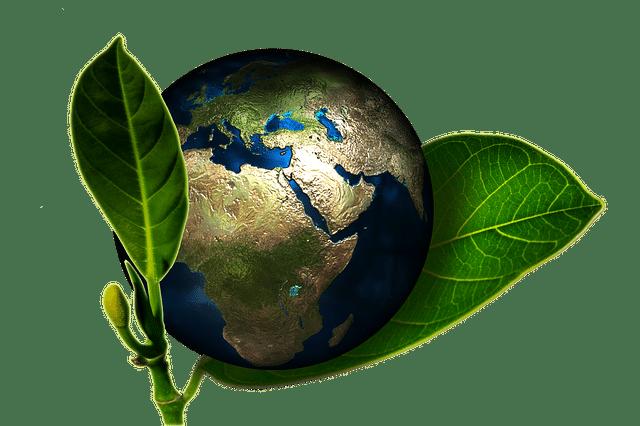 campeggio-eco-friendly